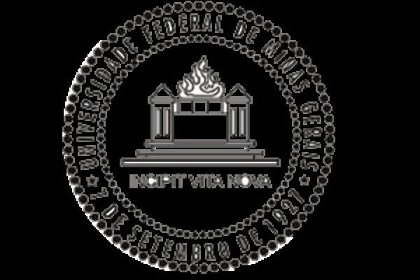 Universidade Federal de Minas Gerais Logo